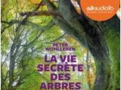 secrète arbres