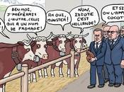 Macron Cocotte