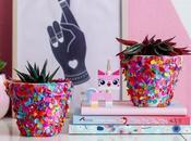 Pots Fleurs Confettis