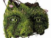 Sculptures végétales Emeric Chantier
