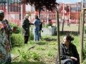 Montreuil devient ville-jardin potager ciel ouvert cultivée habitants