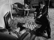 Quiz hebdo échecs Stephen Hawking