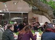 Découverte restaurant Vapiano Disney Village
