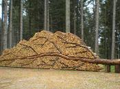 L'art stockage bois chauffage