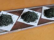 Trois gyokuro vintage Kyô-Tanabe