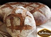Belledonne lance pain base farines blés anciens