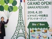 conquête marché Japon