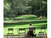 L'histoire fameuses chaises Luxembourg
