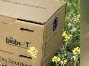 Biodiversité vous installiez ruche pour bourdons dans votre jardin