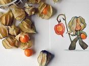 Fruits Characters, illustrations aquarelles Marija Tiurina