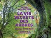 secrete arbres