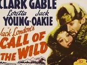 L'Appel forêt Call Wild, William Wellman (1935)