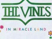 Vines Miracle Land Aspetisé inspiré