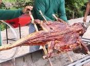 Ratchaburi, Crocodile broche cœur canne sucre (vidéo)