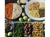 super sources protéines végétales