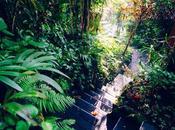 Shambali, jardin amoureux
