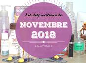 disparitions Novembre 2018