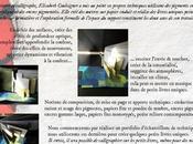 Stage Livres uniques peints Montreuil-Bellay
