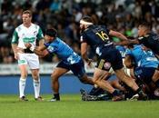 Présentations Super Rugby 2019 Nouvelle-Zélande
