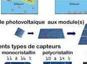 attentes professionnels filière photovoltaïque années passées concrétisent