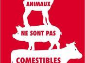 """""""Les animaux sont comestibles"""" Martin Page, d'un certain primal dans nuit…"""