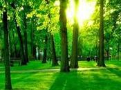 harmonie avec nature.