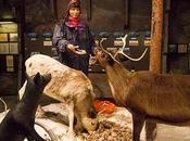 Visiter Suède musées sites touristiques