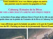 Pique-nique l'association chiens galgos dimanche 2019 Cabourgs 14390