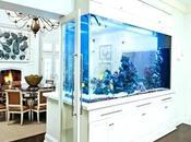 Modern Fish Tank