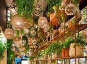 Cloison végétale espace green