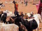 Burkina Faso préoccupations face dégradation sécuritaire conséquences humanitaires importantes