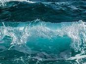 Essayer Wing Surf pourquoi vous devez absolument faire