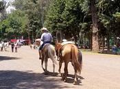 Tout savoir pour visiter Xochimilco Mexico