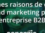 bonnes raisons choisir l'Inbound marketing pour entreprise