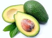 AVOCAT L'Avocatine nouveau supplément anti-obésité