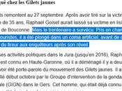 #fachosphère Raphael Goiset, #FNJ #GiletsJaunes, identifié victime d'une tentative d'assassinat
