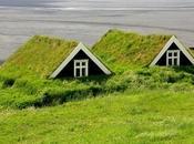 maison dans nature