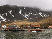 L'aventure merveilleuse Antarctique Partie Grytviken Orcades