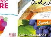 Salons 2020 Angers Vins Loire, Levée Loire Demeter