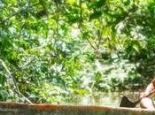 """les fils vent"".l'animisme indiens tukano desana.(3)"
