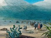 """""""tableau nature"""".la geopoetique d'alexandre humboldt(1)"""
