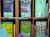 Ré-ouverture l'épicerie guillo-terrienne