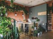 IKEA dévoile Maison demain oasis urbaine remplie plantes inspirera durabilité
