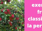 Plus exemples fruitiers classiques pour jardin urbain permaculture (vidéo)