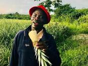 Ghana. recherche Kwabena l'homme ananas