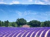 Recette Provence, liste spécialités provençales