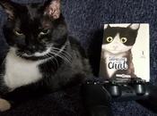 Nouveauté gameuse chat