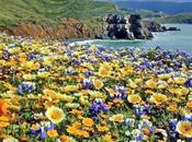 nature, emerveillement !!!!