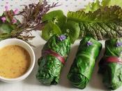 Nems blettes sarrasin courge (Vegan)