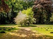 Comment faire jardin endroit accueillant